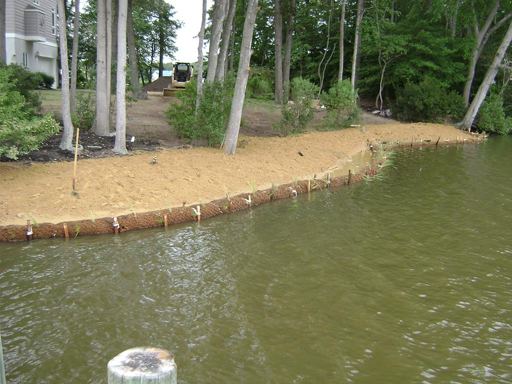 Planted coir logs following placement of associated clean fill on opposite side of pier