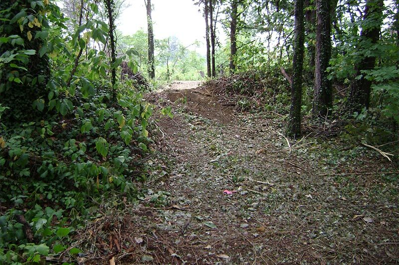 Nature trail construction clearing old path of poison ivy and debris