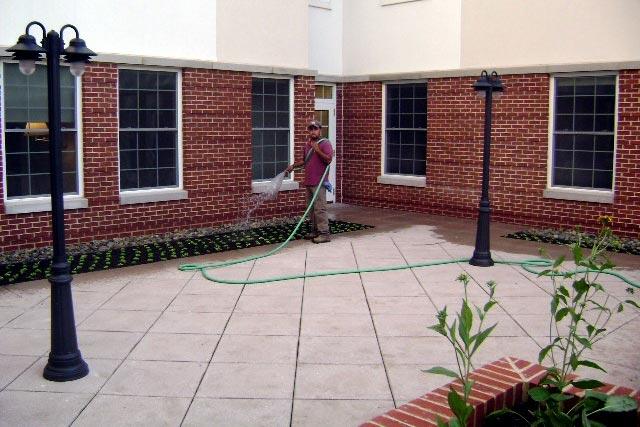 pickersgill-commercial-green-roof-2